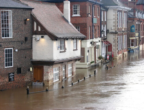 Flood Damage Help: What to Do If You Have Water Damage